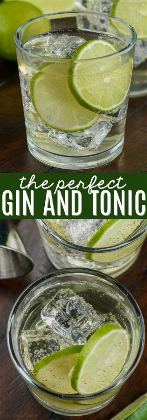 The Perfect Gin and Tonic Recipe - Shake Drink Repeat