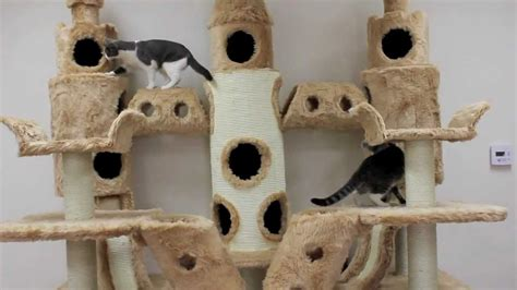 Buckingham Palace Cat Tree by Kitty Mansions - YouTube