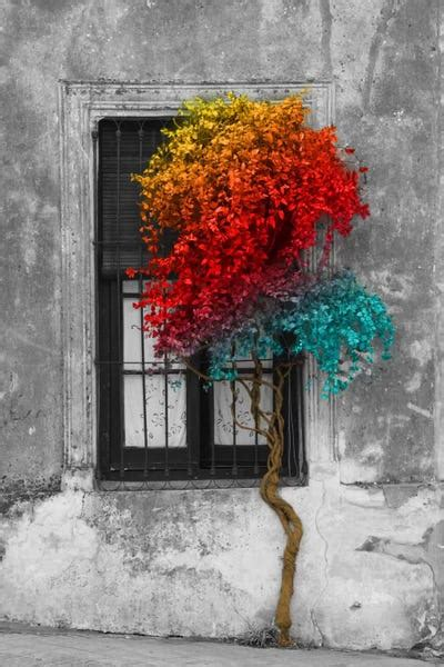 Tree in Front of Window Rainbow Pop Color Pop Art Print